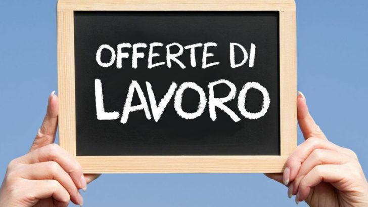 Concorsi docenti, il Comune di Genova assume nella scuola d'infanzia: domanda e modulo